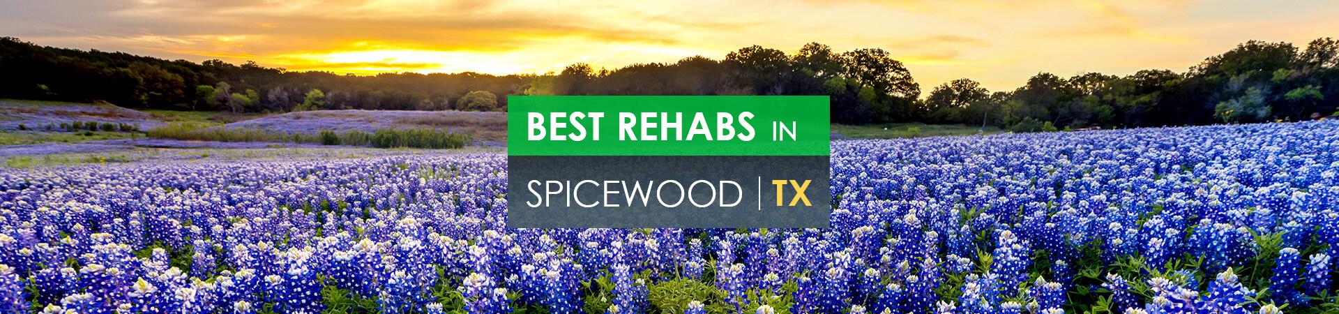 Best rehabs in Spicewood, TX