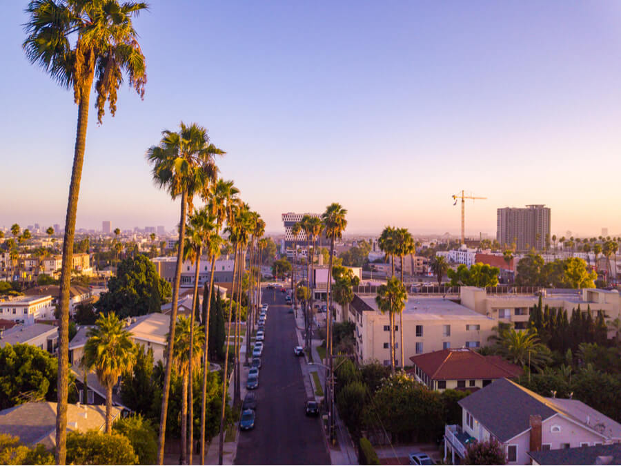 Beverly Hills street with palm trees