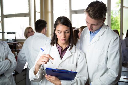 loperamide drug class
