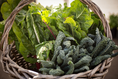 Basket of Spinach and Collard Green