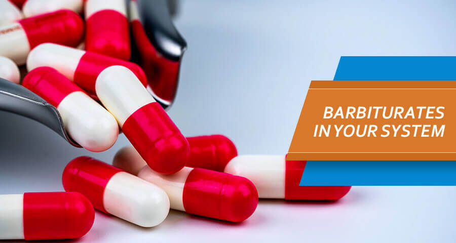 how long do barbiturates stay in your system?