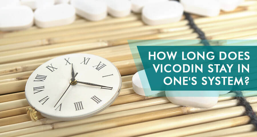 How long does Vicodin stay in one's urine, blood, hair