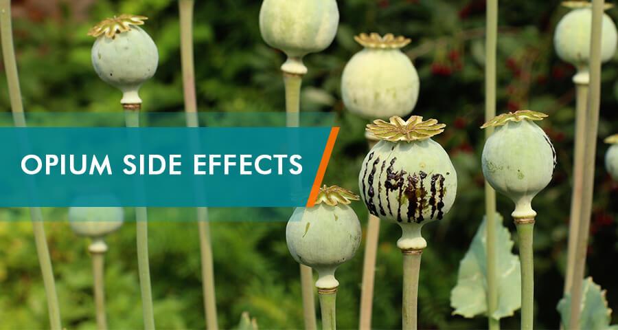 opium side effects