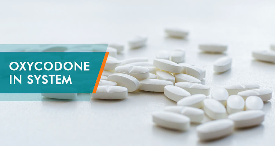 how long oxycodone stays in system