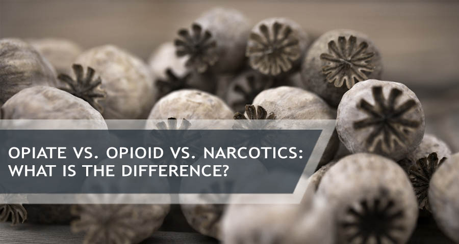 opiate vs. opioid vs. narcotics What Is The Difference