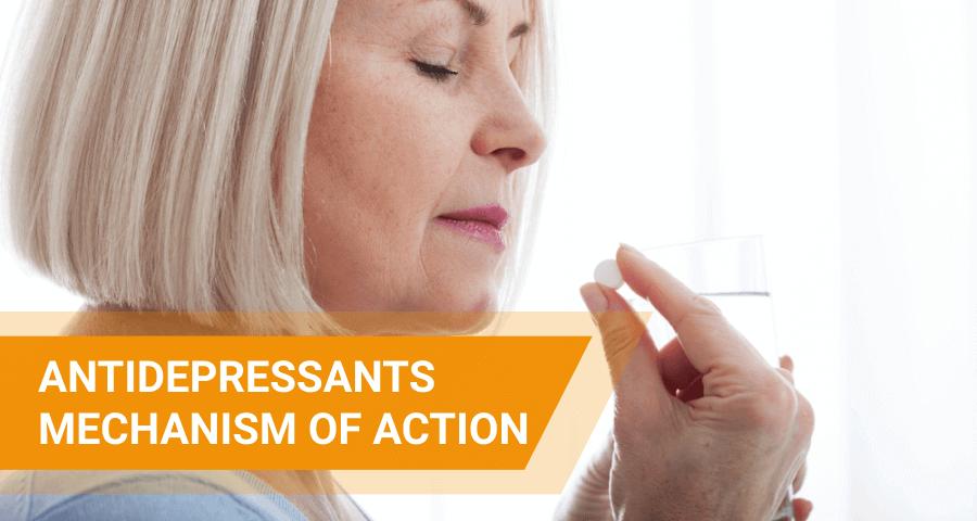 how antidepressants work
