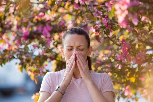 allergic rhinitis in spring