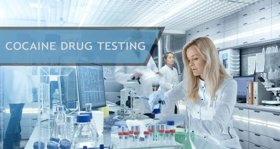 Laboratory workers analyzing samples for Cocaine Drug Testing