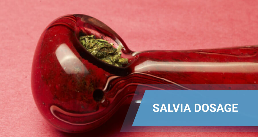 dry salvia in pipe