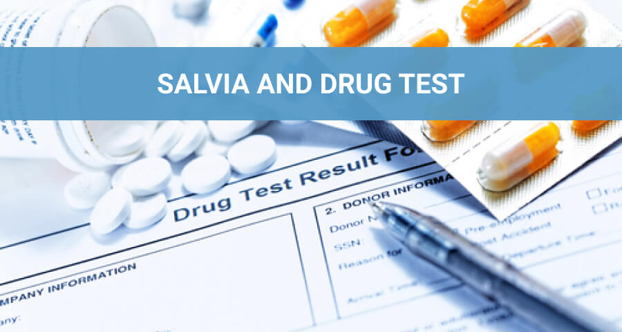 drug test results sheet