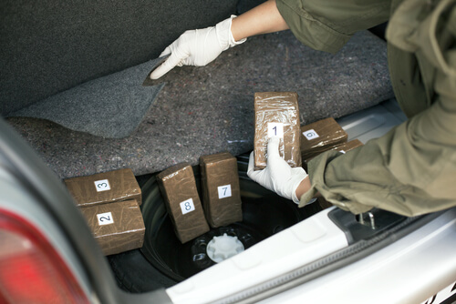 uncovering packs of drug in trunk