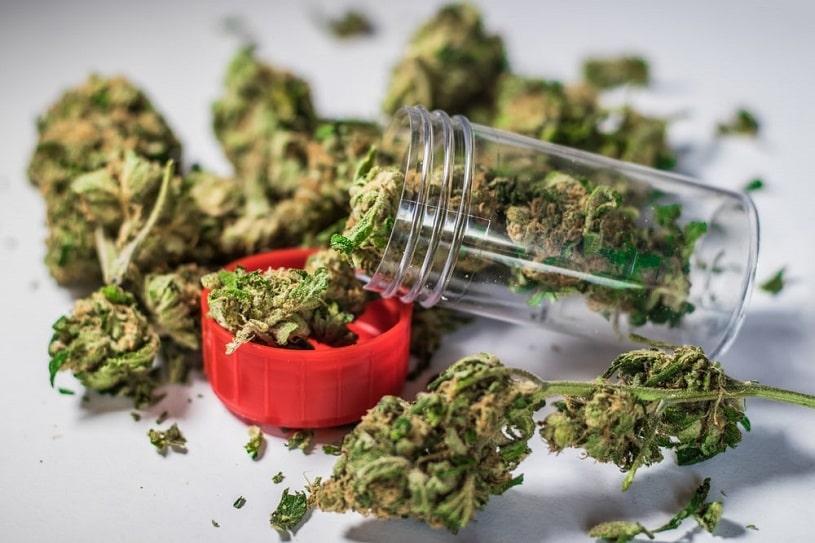 Marijuana buds near the bottle.