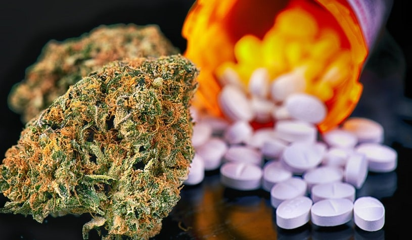 Marijuana buds and percocet pills.