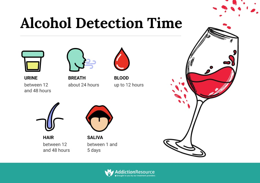 Alcohol Detection Time Infographics.