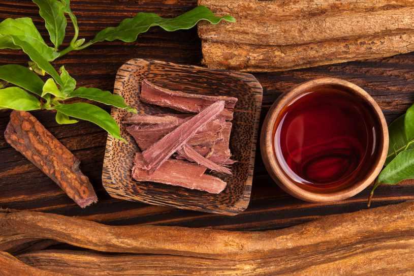 Ayahuasca tea is rich on DMT.
