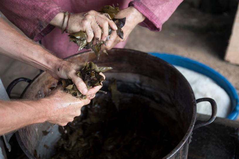 Indigenous people preparing Ayahuasca tea.