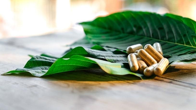 Kratom capsules on Kratom leaves.