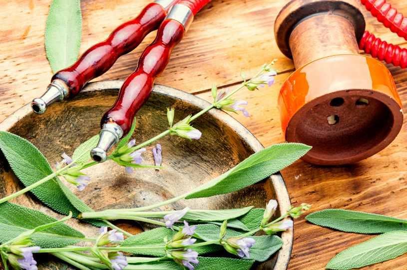 Salvia drug on the table.